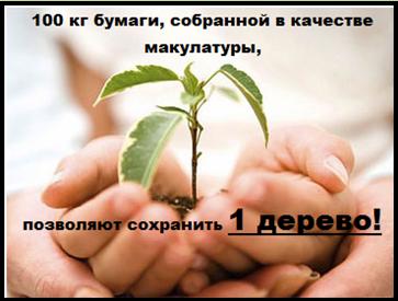 Архив материалов - Сайт школы 37 города Кемерово